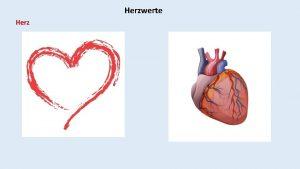 Herzwerte Herz Herzwerte Bedeutungen Hebrisch leb Inners Zentrum
