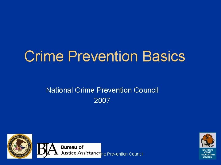 Crime Prevention Basics National Crime Prevention Council 2007