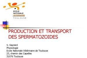ECOLE NATIONALE VETERINAIRE TOULOUSE PRODUCTION ET TRANSPORT DES