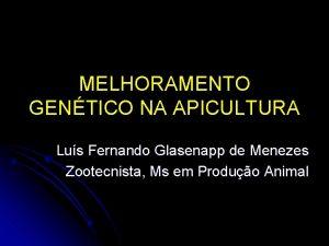 MELHORAMENTO GENTICO NA APICULTURA Lus Fernando Glasenapp de