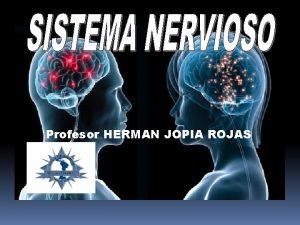 Profesor HERMAN JOPIA ROJAS MDULA ESPINAL MDULA ESPINAL