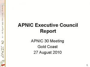 APNIC Executive Council Report APNIC 30 Meeting Gold
