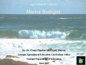 Agricultural Careers Marine Biologist By Dr Frank Flanders