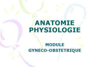 ANATOMIE PHYSIOLOGIE MODULE GYNECOOBSTETRIQUE PLAN Lappareil gnital fminin