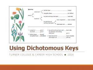 Using Dichotomous Keys TURNER C OLLEGE CAR EER