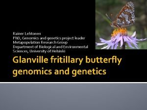Rainer Lehtonen Ph D Genomics and genetics project