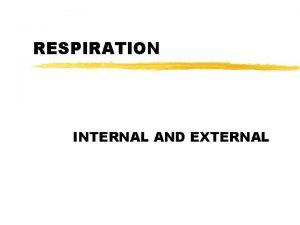 RESPIRATION INTERNAL AND EXTERNAL INTERNAL RESPIRATION z CELLULAR
