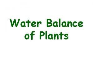 Water Balance of Plants Water balance of plants