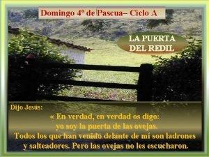 Domingo 4 de Pascua Ciclo A LA PUERTA