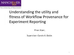Understanding the utility and fitness of Workflow Provenance