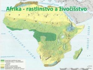 Afrika rastlinstvo a ivostvo Krajina subtropickho rastlinstva nachdza