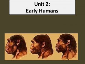 Unit 2 Early Humans The First Humans Hominids