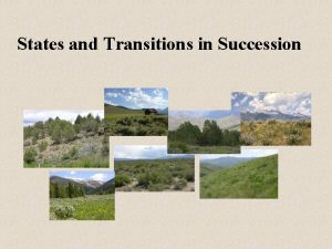 States and Transitions in Succession Plant Community Succession