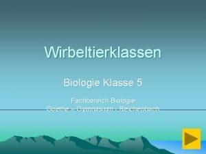 Wirbeltierklassen Biologie Klasse 5 Fachbereich Biologie Goethe Gymnasium