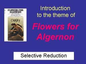 Introduction to theme of Flowers for Algernon Selective