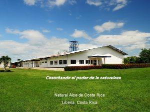 Liberia Guanacaste Cosechando el poder de la naturaleza