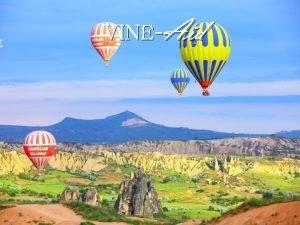 E VINEAid Saving the sentence Balloon Example I