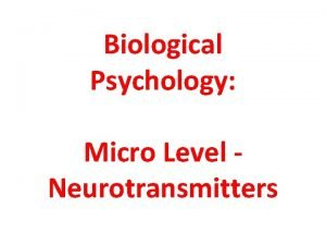 Biological Psychology Micro Level Neurotransmitters http commons wikimedia