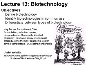Lecture 13 Biotechnology Objectives Define biotechnology Identify biotechnologies