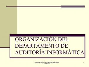 ORGANIZACIN DEL DEPARTAMENTO DE AUDITORA INFORMTICA Organizacin del