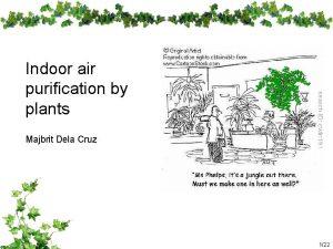 Indoor air purification by plants Majbrit Dela Cruz