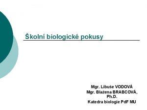 koln biologick pokusy Mgr Libue VODOV Mgr Blaena