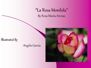 La Rosa Mordida By Rosa Maria Arenas Illustrated