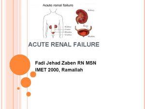 ACUTE RENAL FAILURE Fadi Jehad Zaben RN MSN