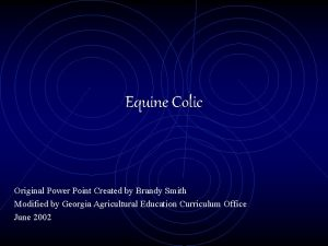 Equine Colic Original Power Point Created by Brandy