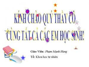 Gio Vin Phm Mnh Hng T Khoa hc