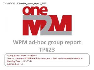 TP2016 0131 R 01 WPMstatusreportTP 23 WPM adhoc