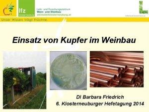 Einsatz von Kupfer im Weinbau DI Barbara Friedrich