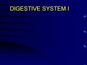DIGESTIVE SYSTEM I I Digestive system General considerations