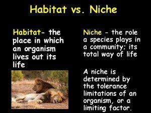 Habitat vs Niche Habitat the place in which