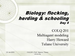 Biology flocking herding schooling Day 5 COLQ 201