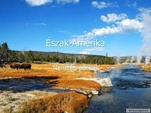 szakAmerika Nemzeti parkok Yellowstone Nemzeti park n n