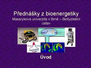 Pednky z bioenergetiky Masarykova univerzita v Brn Biofyzikln