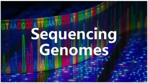Sequencing Genomes Dr Hilal AY DNA sequencing Chaintermination