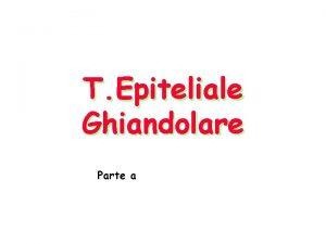 T Epiteliale Ghiandolare Parte a Ghiandole Originano per