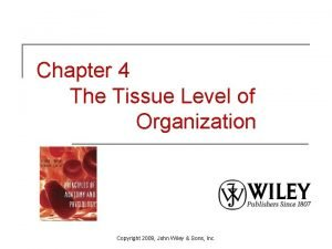 Chapter 4 The Tissue Level of Organization Copyright