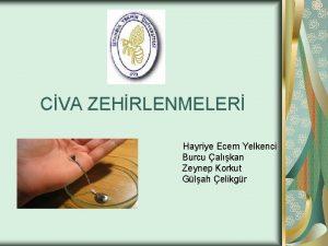 CVA ZEHRLENMELER Hayriye Ecem Yelkenci Burcu alkan Zeynep