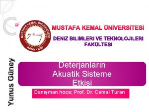 Yunus Gney MUSTAFA KEMAL NVERSTES Deterjanlarn Akuatik Sisteme