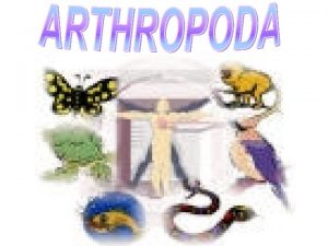 In Greek arthros means joint podos means foot