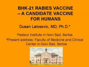 BHK21 RABIES VACCINE A CANDIDATE VACCINE FOR HUMANS