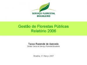 Gesto de Florestas Pblicas Relatrio 2006 Tasso Rezende