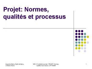 Projet Normes qualits et processus Argendra Marie Diallo