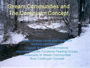Stream Communities and The Continuum Concept Stream Energy