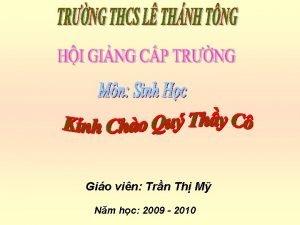 Gio vin Trn Th M Nm hc 2009