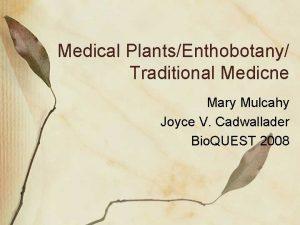 Medical PlantsEnthobotany Traditional Medicne Mary Mulcahy Joyce V