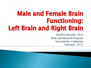 Male and Female Brain Functioning Left Brain and